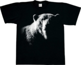 Harlequin T-Shirt Bear Shadow